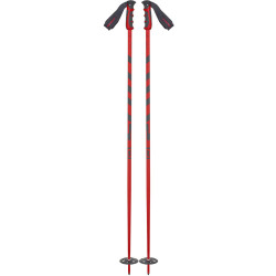 BATONS DE SKI TEAM ISSUE RED