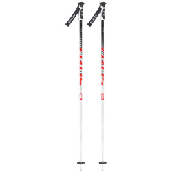 BATONS DE SKI PUNISHER WHITE