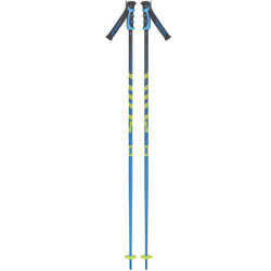 BATONS DE SKI PUNISHER BLUE