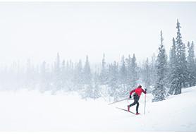 Pack ski de fond + fix d'occasion